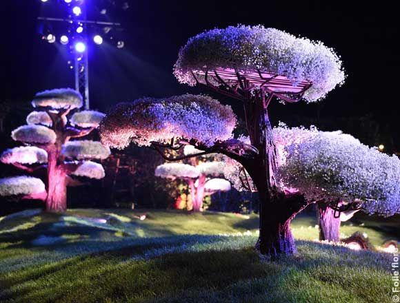 Folie'flore et les journées d'octobre sont deux évènements qui se déroulent au 1er au 11 octobre 2015 au Parc Expo de Mulhouse. Folie'flore, un spectacle floral unique Vous vous promenez sur 10.000 m² dans 20 jardins éphémères mis en scène, en lumière et en musique. Le thème de l'année est : Les fruits et légumes dans tous leurs états. Des tableaux en 3D, comme la Tour Eiffel, un dinosaure, un paon géant de 300 m²… sont réalisés avec des fruits et des légumes, impressionnant et unique ! Sur…