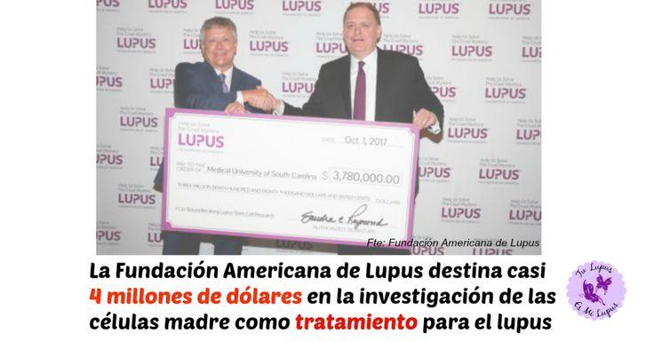 La Fundación Americana de Lupus destina 3.780.000$ al estudio de las células madre mesenquimales como tratamiento para el lupus.  Con este tratamiento sería posible la remisión del lupus a través de un trasplante de células madre de cualquier persona.  Y recuerda! A fecha de hoy no hay ningún tratamiento para lupus basado en células madre. Que no jueguen con tu salud…