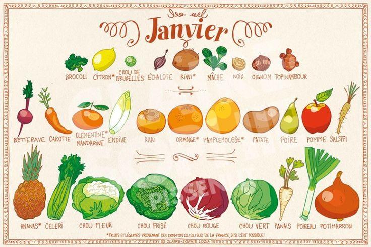 Fruits & légumes de Janvier – Le calendrier de saison