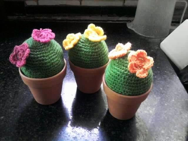 Cactus tejidos en versión mas minimalista