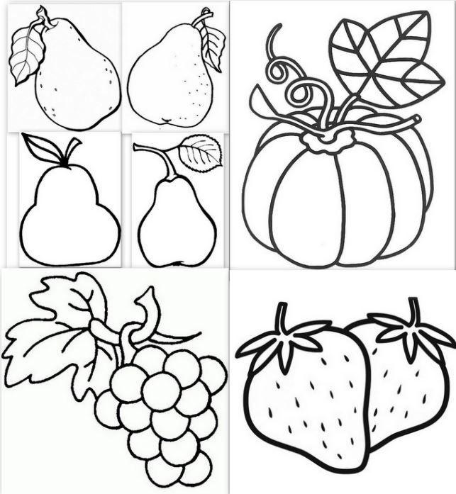Dessins Modèles Gabarits Fruits Coloriage Dessin