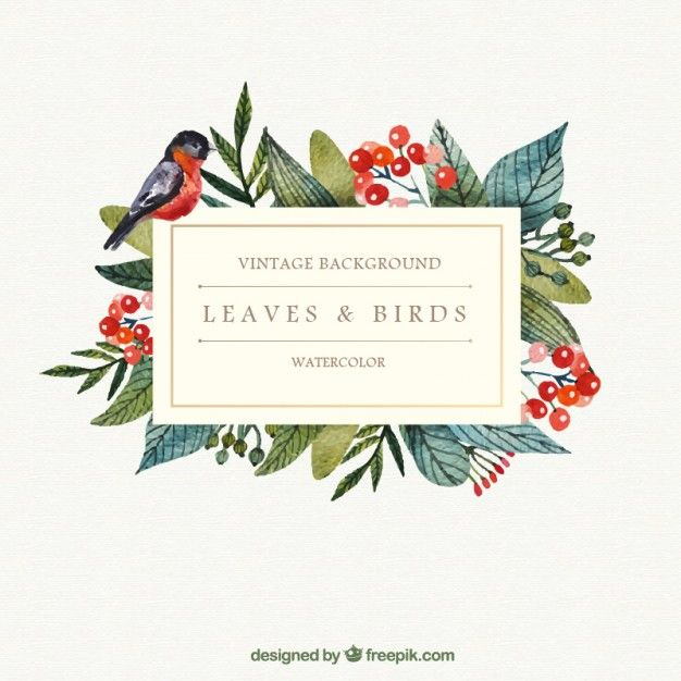 Watercolor leaves and bird background Free Vector