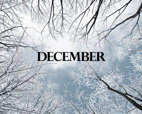 december.jpg (285×230)
