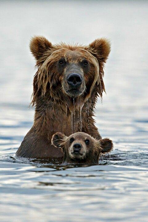 Mama and Baby bear ❤