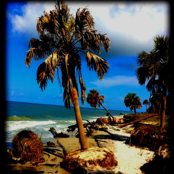 24 best images about budget beach vacation spots on for Cape san blas fishing