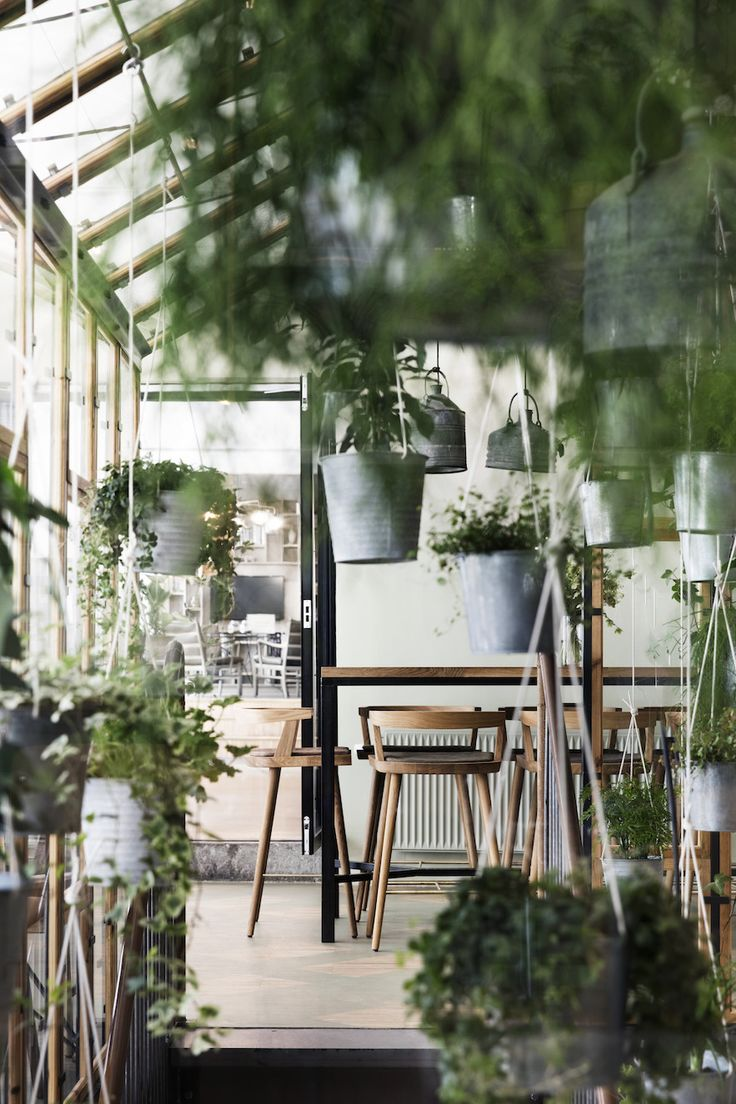 Best ideas about indoor greenhouse on pinterest