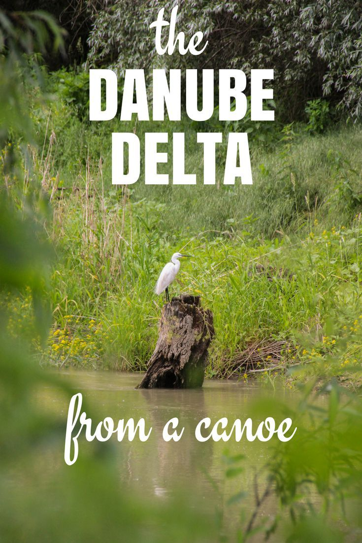 Exploring the Danube Delta in Romania from a canoe! Read all about our adventure -->