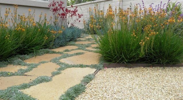 Cameron flagstone with Dymondia and Crushed California Gold gravel 3/8""