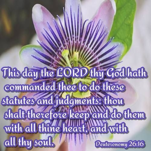 Deuteronomy 26:16 - The LORD your God commands you this day to follow these decrees and laws; carefully observe them with all your heart and with all your soul.