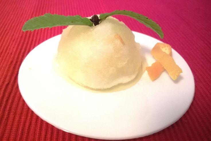 Orange Sorbet I Science, Gastronomy & Healthy Living