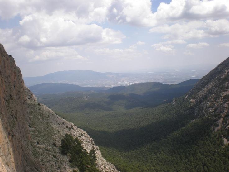 valle de leiva