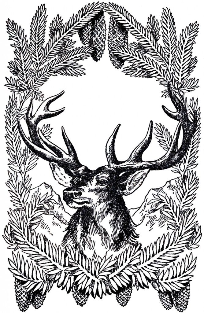 Free Vintage Christmas Picture Deer - available in 4 different colors