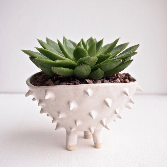 La main grand blanc céramique hérissés cactus planteur, planteur, poterie, cache-pot, jardinière succulente, pot de fleur, céramique, céramique à la main
