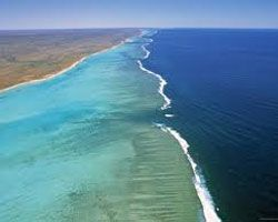 Ningaloo Reef and Shark Bay  Stretching for almost 300 kilometres. Ningaloo Reef is, at times, home to the Whale Shark