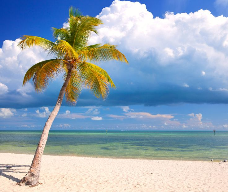Florida Keys Rambler - articles on almost everything in the Keys