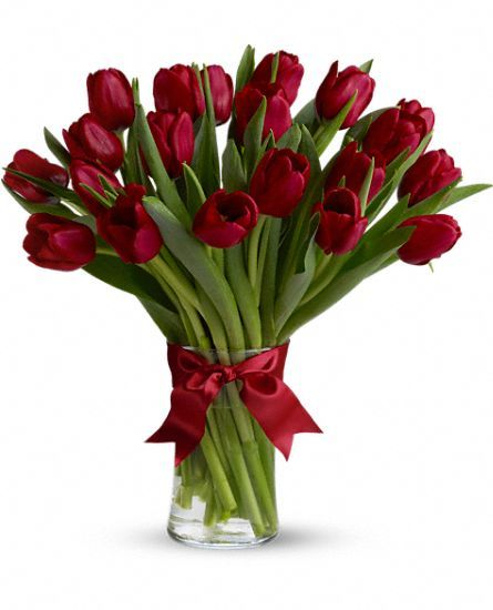 Red Tulip _ amazing idea for Valentine! Let's check Teleflora Coupon for big saving this Valentine!