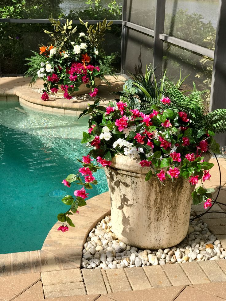 A Florida Pool Container Planting Of Assorted Outdoor