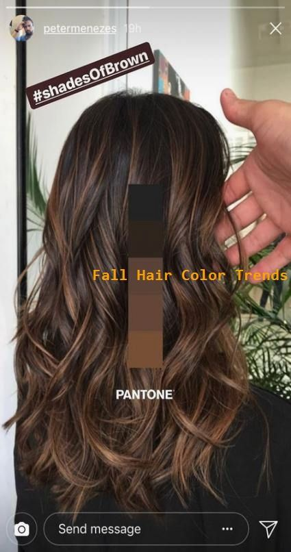 Hair Color Brown Shades Balayage 60+ Ideas For…