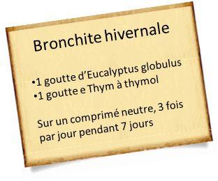 bronchite : Eucalyptus globulus et Thym à thymol
