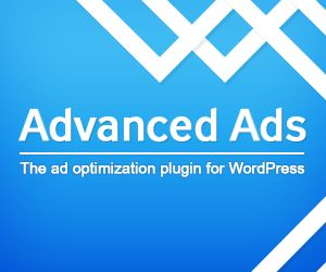 Manage and optimize your ads in WordPress