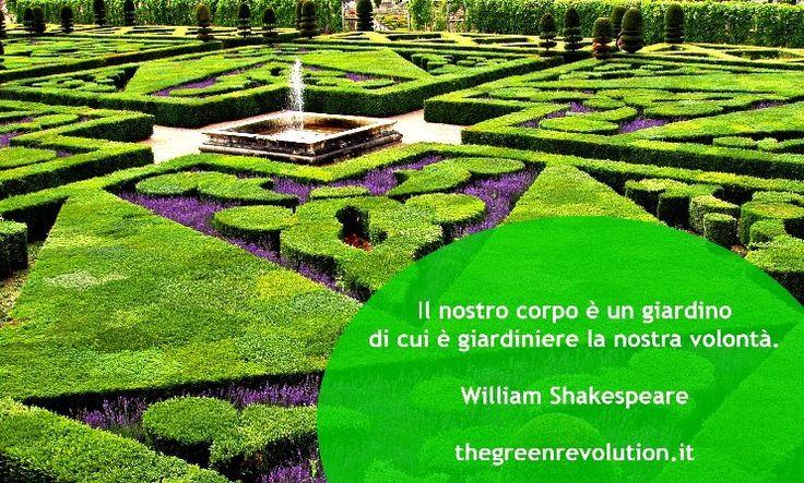 Quote by William Shakespeare #quotes #quote #aforismi #nature #natura #flowers #citazioni #naturequotes #Shakespeare  #williamshakespeare #william