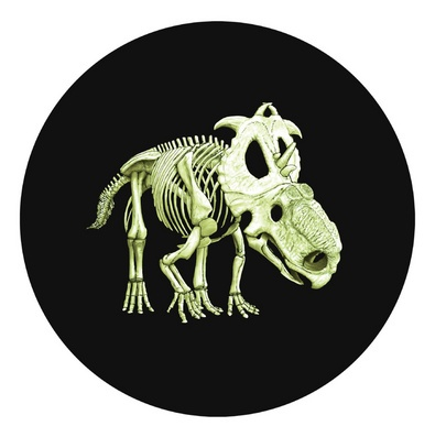 The Royal Canadian Mint has just released this cool Glow In the Dark Coin: Royals Canadian, Canadian Coins, Dinosaurs Coins, Glow In The Dark Dinosaurs, Dino Quarter, Glow In The Dark Coins, Glow In The Dark Quarter, As A Canadian, The Royals
