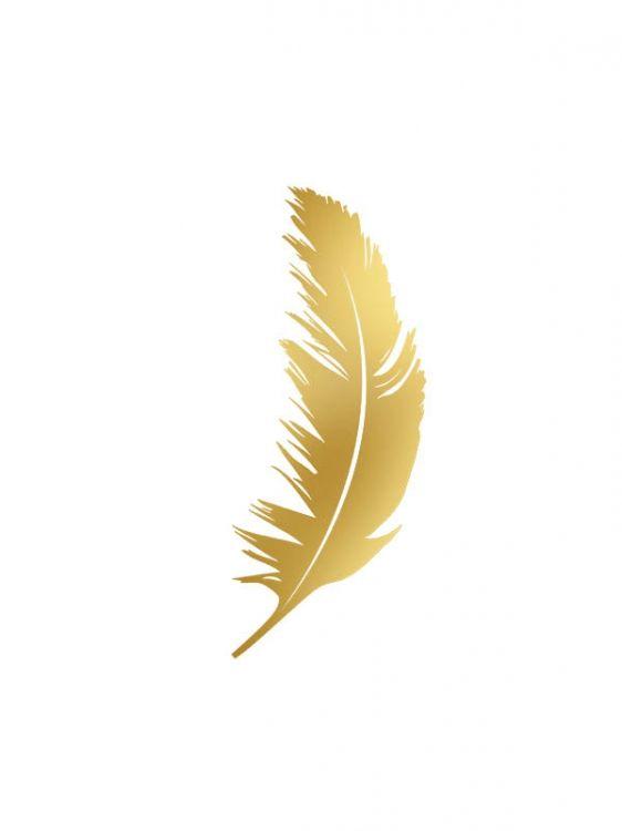 Print med fjäder i guld. Snygg att matcha med andra posters och motiv i guld. På desenio.se finns massvis av guldprints samt posters och affischer med fjädrar.