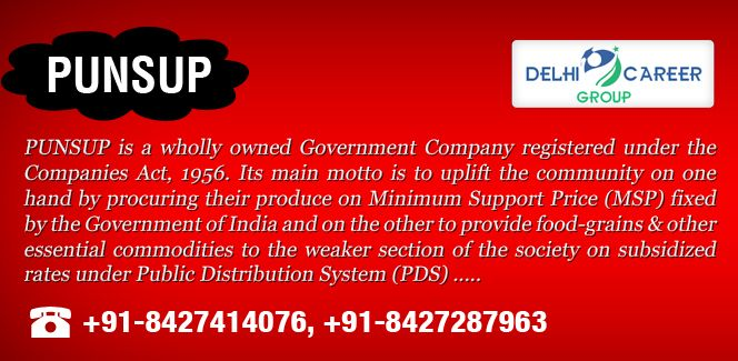 PUNSUP is a wholly owned Government Company registered under the Companies Act, 1956. http://www.delhicareergroup.com/punsup.php