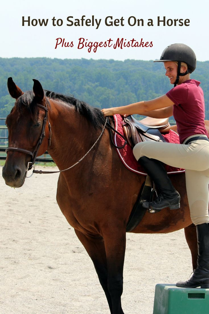 How To Safely Get On A Horse Biggest Mistakes Crk Training Llc Horses Trail Riding Horses Horse Training