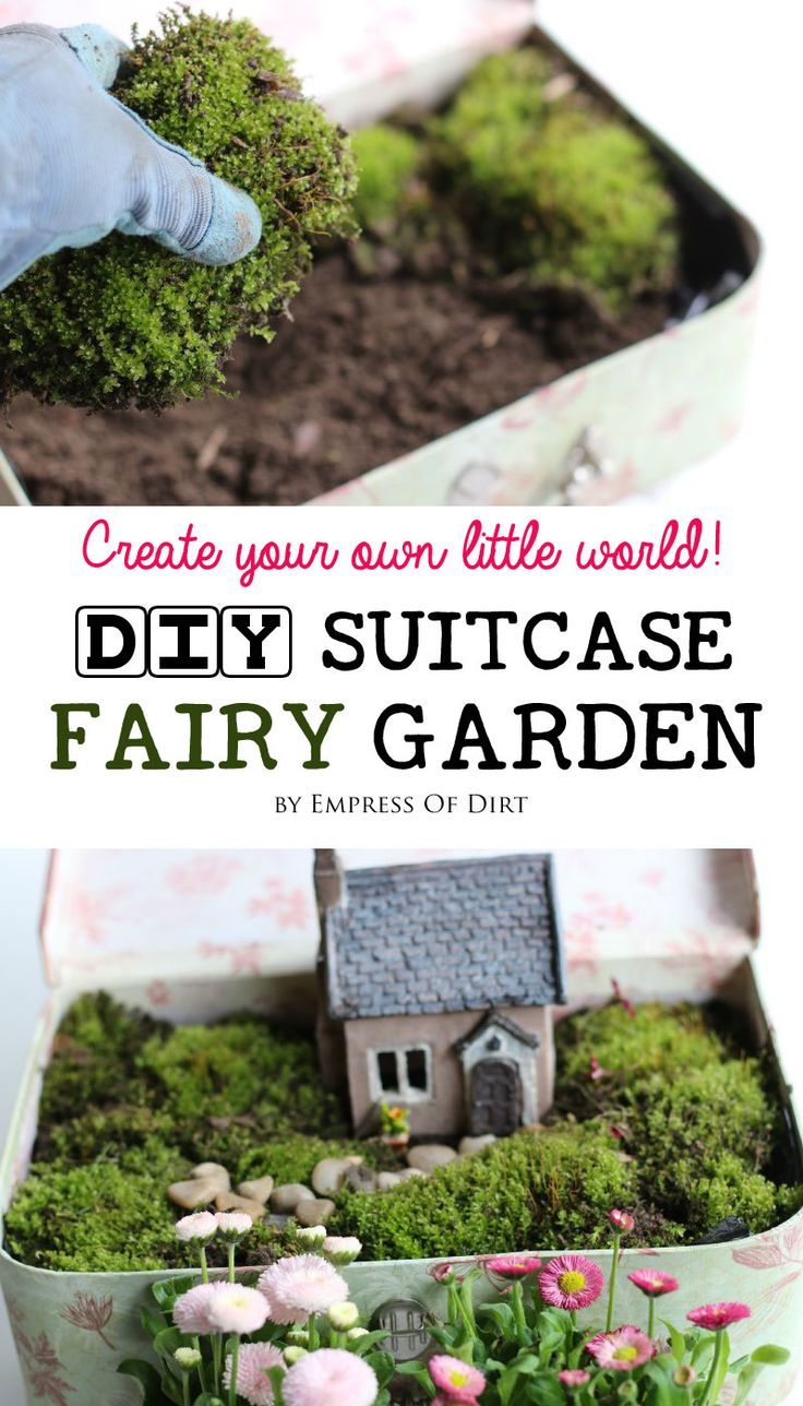 Create Your Own Little World With An Enchanting Suitcase Fairy Garden! No  Garden Experience Necessary