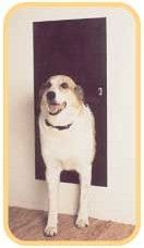 Electronic Pet Door - finally have my life back and my dog can be a dog--roaming around our big back yard.  Love this door.  Operates with magnet on dog's collar--not with a battery sensor.  Have gone from taking my dog on 2 long walks and 6 bathroom breaks a day to just 2 long walks.