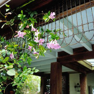 Old wire garden fence fastened to the porch soffit, the fence serves both as a trellis for climbers and as architectural interest on an older home