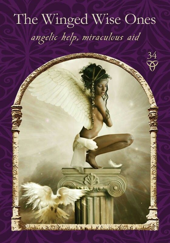 The Winged Wise Ones Tarot