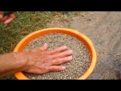 Como lavar la arena para las plantas - YouTube