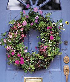 Create a living wreath       By      Celia Cox: The Doors, Canadian Gardens, Blue Doors, Pansies Wreaths, Front Doors, Spring Wreaths, Living Wreaths, Doors Colors,  Flowerpot