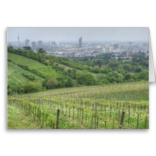 view over vienna, austria - vineyards in grinzing