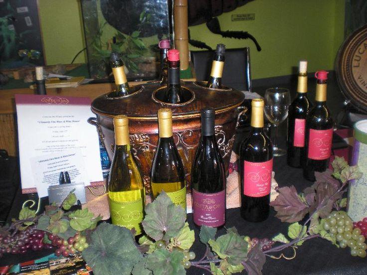 Costa de Oro wines