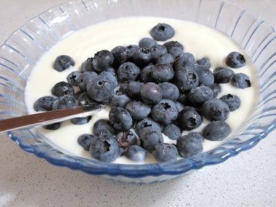 Hirsejoghurt mit Blaubeeren und Karamell - Naturprodukte zum Selbermachen