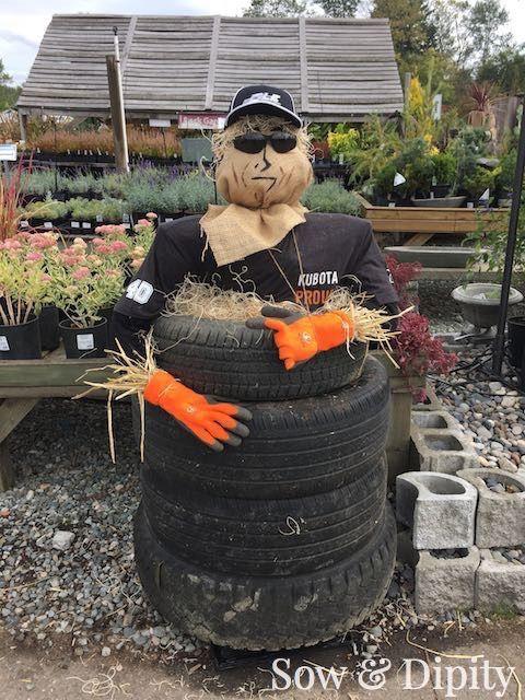 33 Cool Scarecrow Ideas -                                                                                                                                                                                 More
