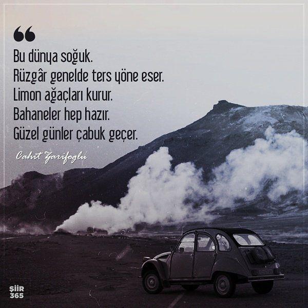 Bu dünya soğuk. Rüzgâr genelde ters yöne eser. Limon ağaçları kurur. Bahaneler hep hazır. Güzel günler çabuk geçer. - Cahit Zarifoğlu #sözler #anlamlısözler #güzelsözler #manalısözler #özlüsözler #alıntı #alıntılar #alıntıdır #alıntısözler #şiir #edebiyat