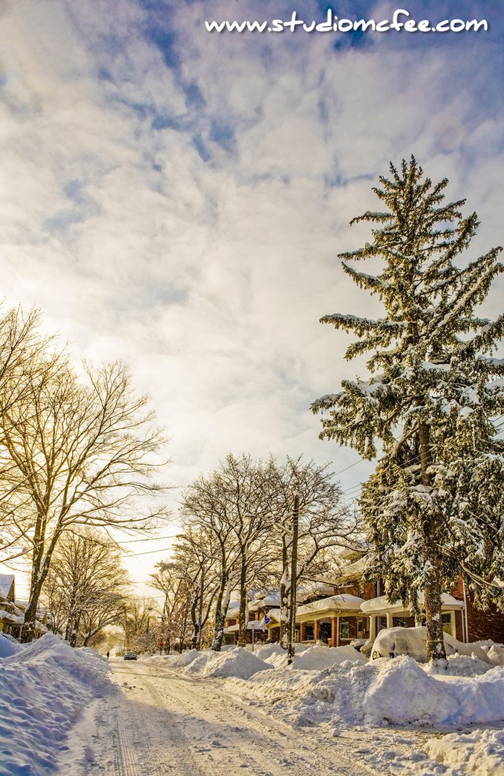 'After the Storm' - morning after a major snowfall in December in London, Ontario, Canada.
