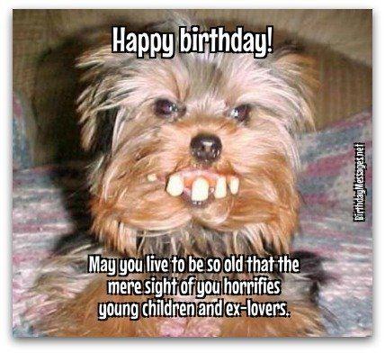 7 best happy birthday images on pinterest happy b day happy funny pics mens birthday cardsmen bookmarktalkfo Gallery