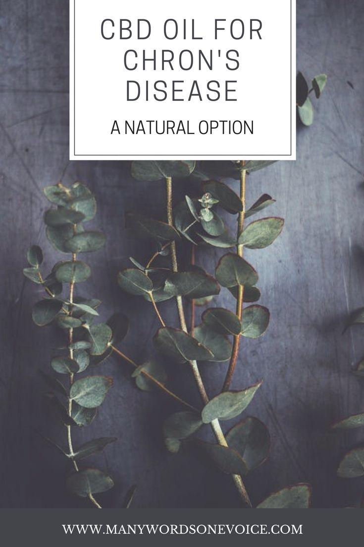 CBD Oil: CBD Oil for Crohn's Disease–A Natural Option