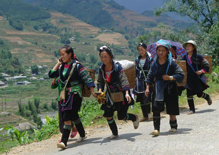 ベトナム北部ラオカイ(Lao Cai)省サパ(Sapa)県の山間を歩く少数民族モン(H'mong)の女性たち(2014年5月10日撮影)。(c)AFP/HOANG DINH Nam ▼7Jul2014AFP|ベトナムから中国へ「花嫁」として人身売買 http://www.afpbb.com/articles/-/3019844 #Sapa_Lao_Cai #H_mong