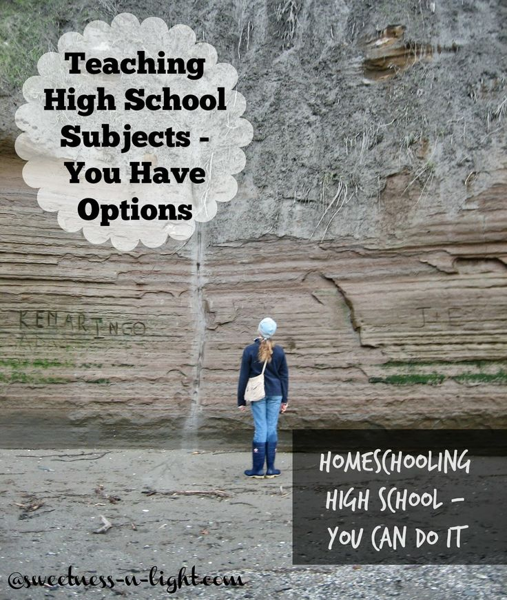 1000 Images About Academic Options For My Phd On: 1000+ Ideas About High School Subjects On Pinterest