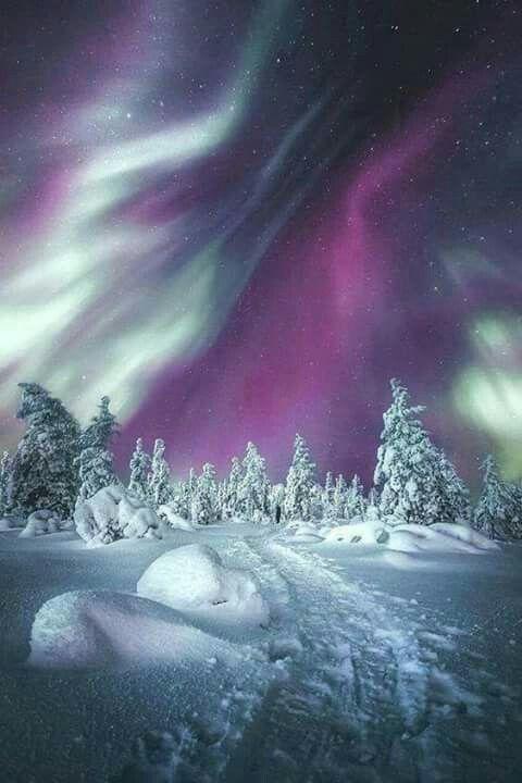Las luces del norte de Filandia. Foto de Cyndee Wildt #NorthernLights #AuroraBorealis #Aurora