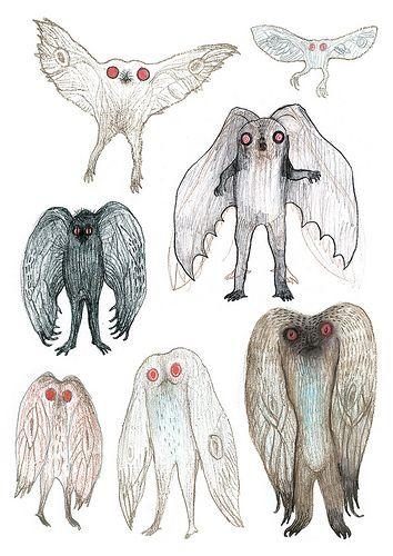 Mothman sketches | Vladimir Stankovic