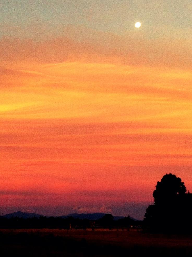 Sunset over Marlborough