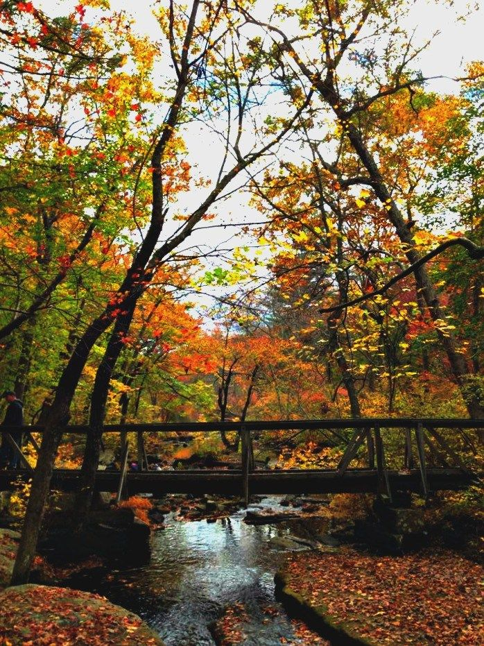 Best new england fall activities                                                                                                                                                                                 More
