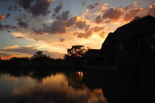 Bushveld Pond Guest House and Wedding Venue | | Gauteng | Pretoria |